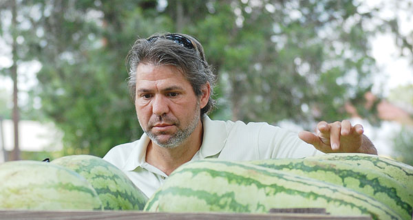 David Adair searches for the perfect watermelon and could find more at Saturday's Choo-Choo Market at Jennings Park.
