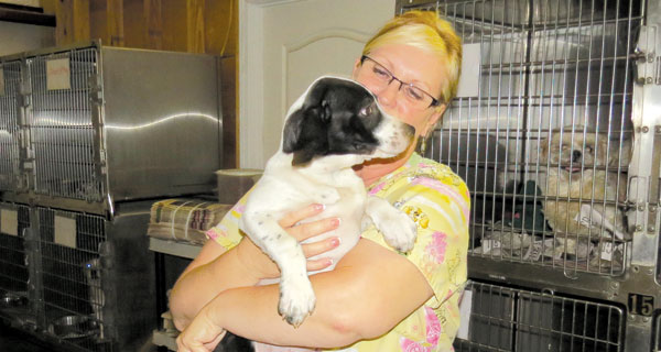 Renee Jones, HSEC director, snuggles with a puppy who that could be a candidate for a foster home.
