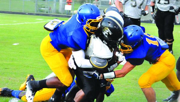 WSN football defense