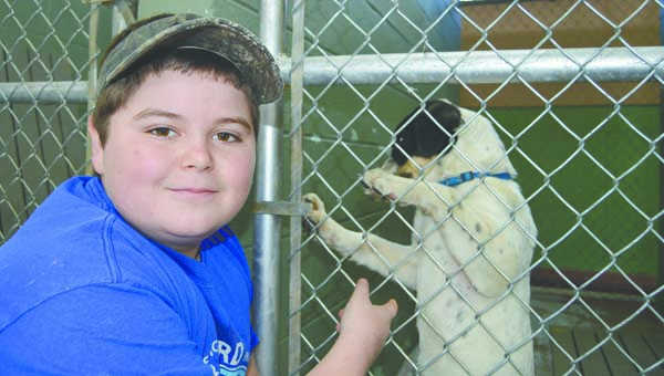 Stephanie Nelson | Brewton Standard Brandon Burkett makes nice with one of the dogs inside the Brewton Animal Shelter. Burkett was trying very hard to convince his mother to allow the animal to come home with them.